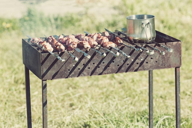 Fresh grilled meat on skewers and outdoor grill with cooking pot outdoors.