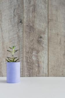 木製の壁の白い机の上に塗装された缶の新鮮な栽培植物