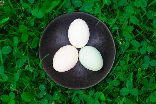 プレート上の新鮮なホロホロ鳥の卵