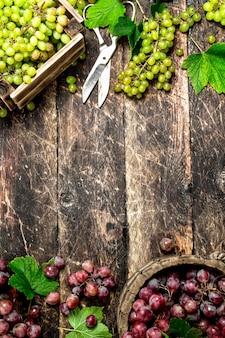箱に入ったブドウの新鮮な収穫