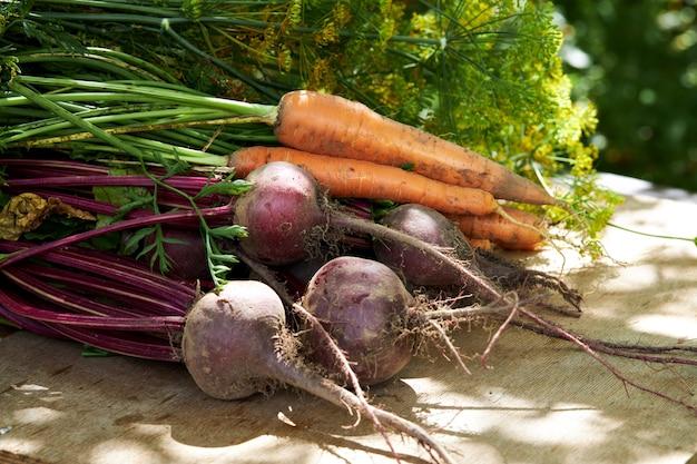 木製のテーブルで有機野菜の新鮮な収穫