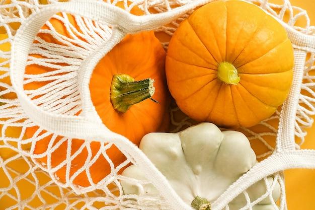Fresh harvest vegetables gourds pumpkin, pattypan squash in reusable shopping eco-friendly mesh bag.