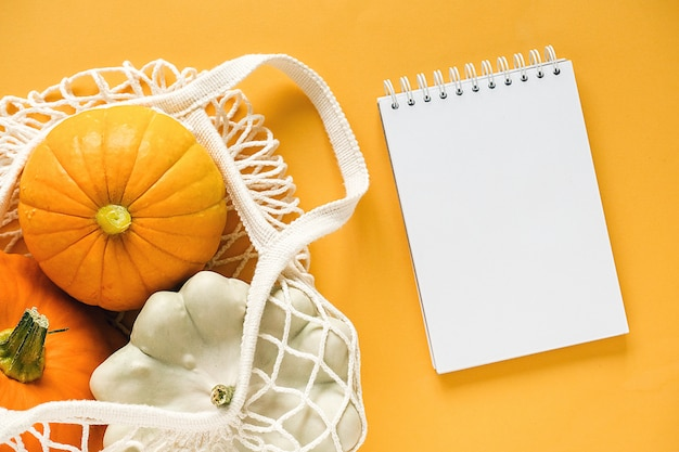 Fresh harvest vegetables gourds pumpkin, pattypan squash in shopping eco-friendly mesh bag and blank notepad