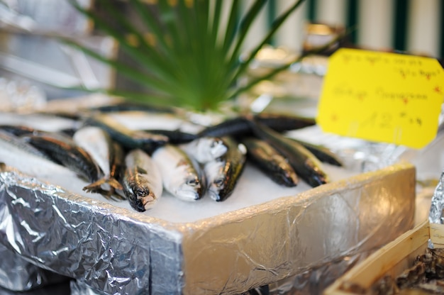 Fresh healthy fish on seafood market