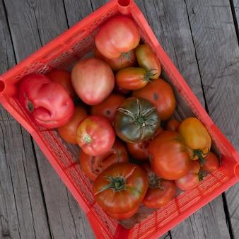 新鮮でヘルシーなトマトがプラスチックの箱に詰められています。