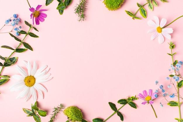 식물 표본 상자 또는 수제 장식을 만들기 위한 신선한 허브 꽃과 노트북