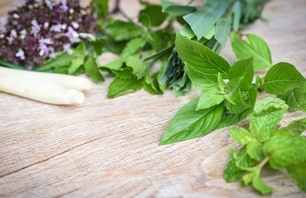 Fresh herbs and spices with sweet basil lemon grass holy basil peppermint leaf ingredient