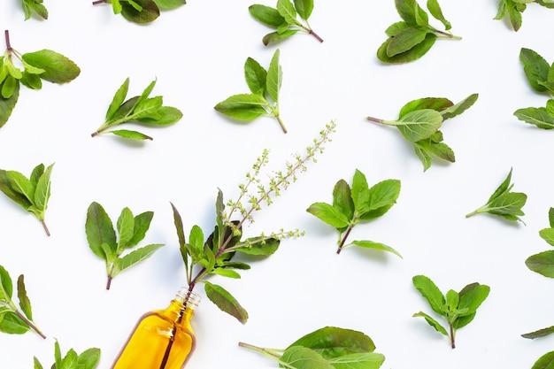 Свежие листья базилика с бутылкой эфирного масла