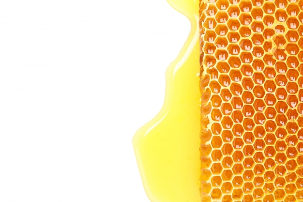 Fresh honeycomb isolated on white background, top view