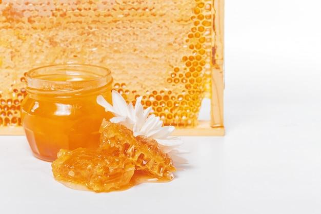 Fresh honeycombs on white