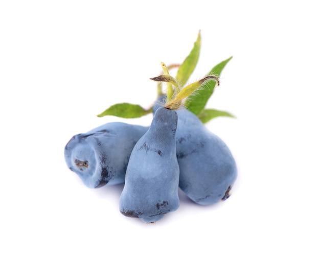 신선한 허니 블루 베리 과일 잎, 흰색 절연