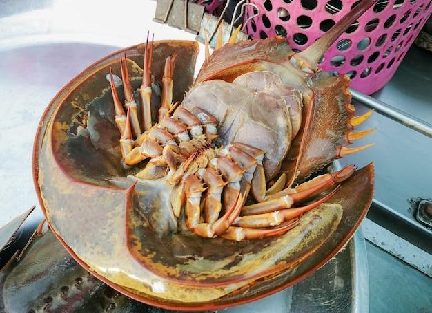 어부의 부두에서 판매되는 신선한 말굽 게 또는 tachypleus gigas