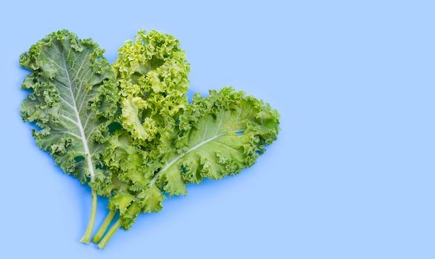 Свежая капуста листья салат овощной на синем.