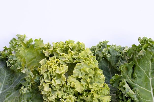 新鮮なケールは白にサラダ野菜を残します