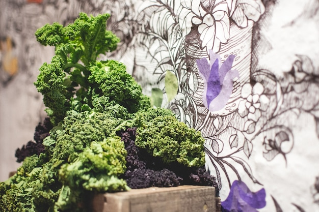 Fresh kale with artistic background