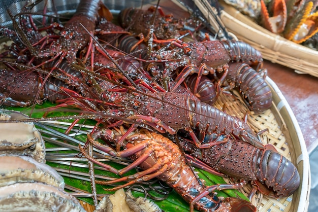 Fresh large japanese spiny lobster ,  prepared for barbecue fire grill in mie , japan