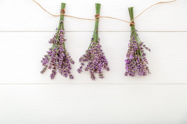 Fresh lavender flower bouquet with purple ribbon on color background. place for text. flatlay herbal flower blossom. lavender aromatherapy. pink background. long web banner with copy space.