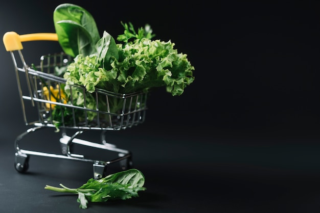 Fresh leafy vegetables in shopping cart on dark backdrop