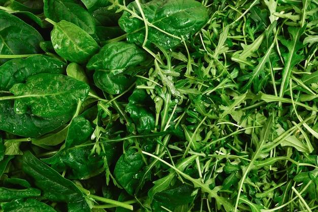 Свежие листья рукколы и шпината в качестве фона.