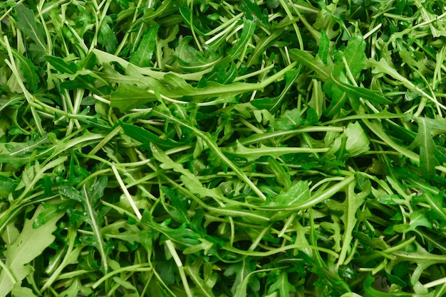 배경으로 arugula의 신선한 잎입니다.