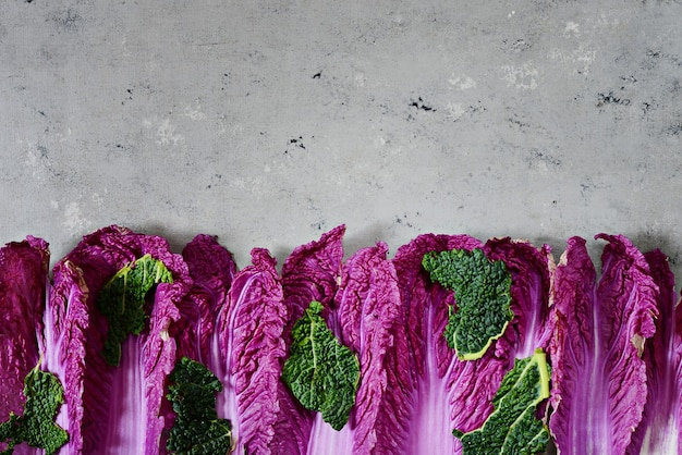 Свежие листья фиолетовой капусты с копией пространства