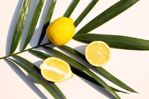 Свежий лимон на листьях тропической пальмы на белой поверхности. вид сверху