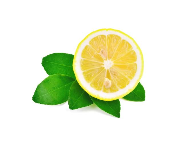 고립 된 신선한 레몬 슬라이스