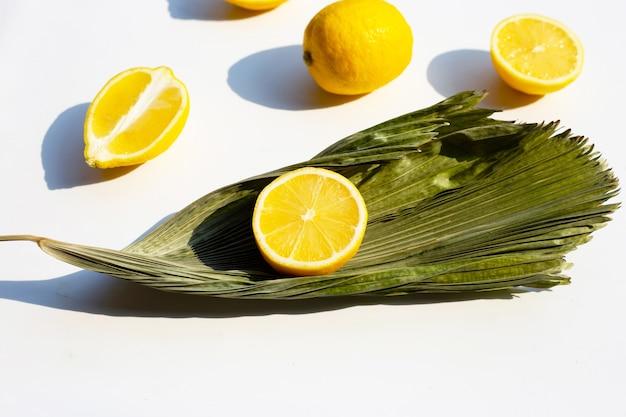 Свежий лимон с сухими листьями на белой поверхности.