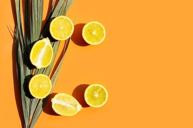 Fresh lemon with palm tree dry leaf on orange surface