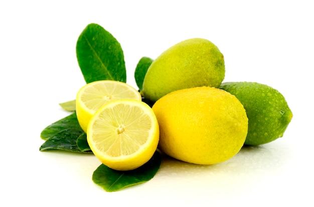 Fresh lemons from organic plantation field.