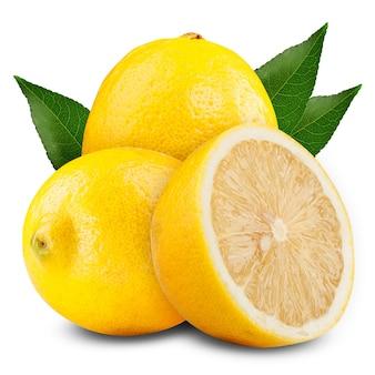 Fresh lemons on white ground