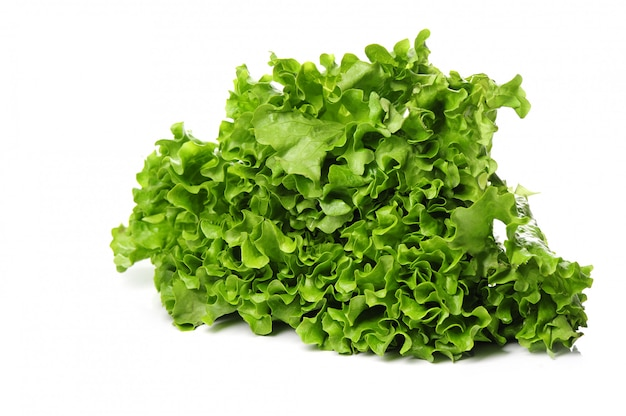 Fresh lettuce isolated