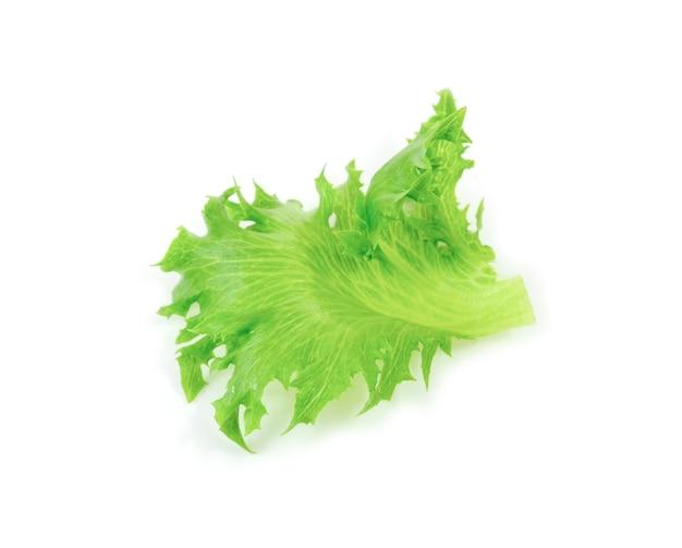 Fresh lettuce salad isolated on white background.