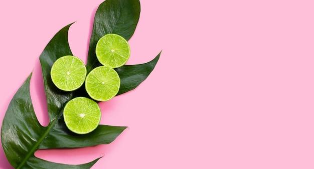 Fresh limes on monstera adansonii leaf on pink background.