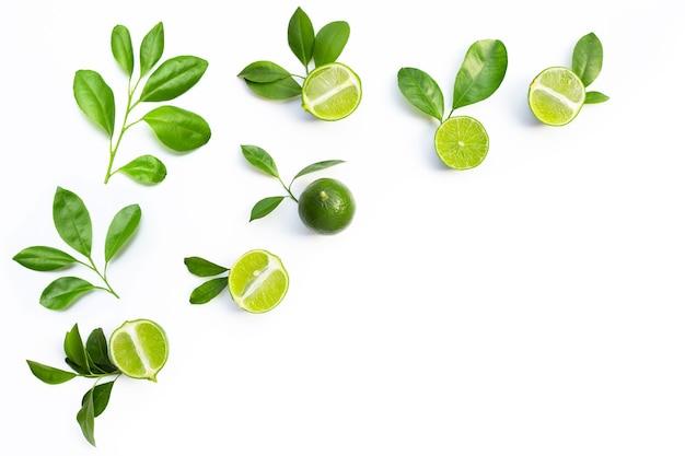 白い背景に緑の葉と新鮮なライム。上面図