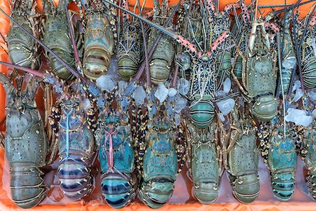 マレーシア、ボルネオ島のコタキナバルの屋台の食べ物市場で売られている新鮮なアカザエビがシーフードをクローズアップ