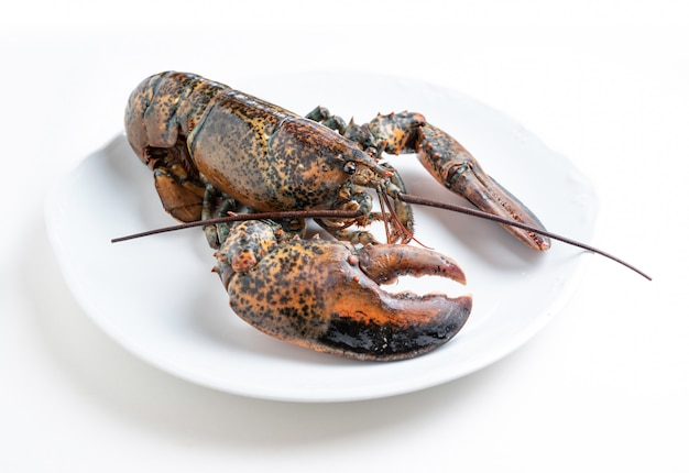 Fresh lobster on a white plate isolated from the background