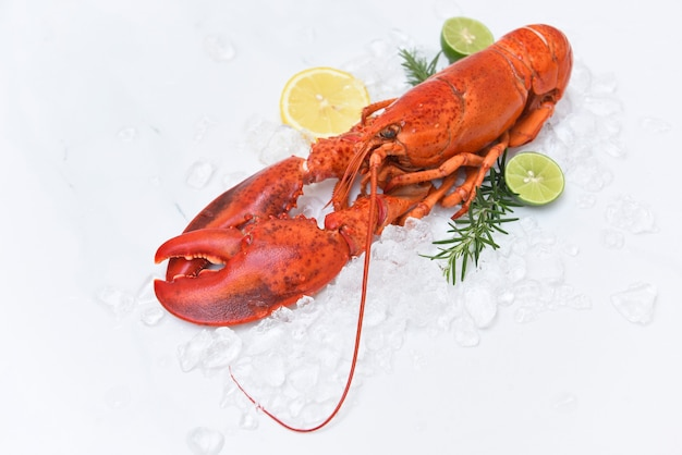 Fresh lobster with herbs and citrus on ice