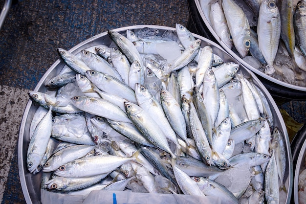 Fresh mackerel fish for sale in seafood market