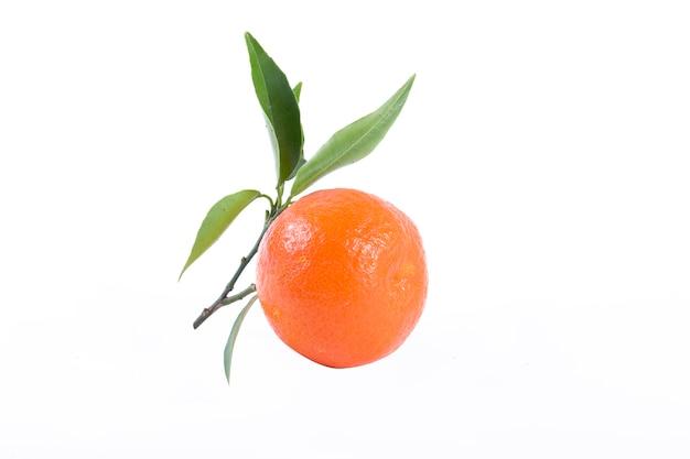 白い背景で隔離の新鮮なみかん。オレンジは一列に並んでいます。白い背景の上に配置。