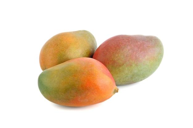흰색 바탕에 신선한 망고 과일