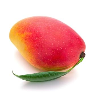 緑の葉が白い背景で隔離の新鮮なマンゴーフルーツ。
