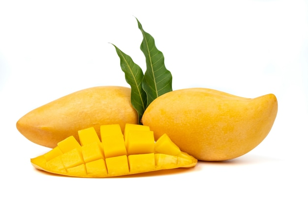 Fresh mango and slice mango on white background.