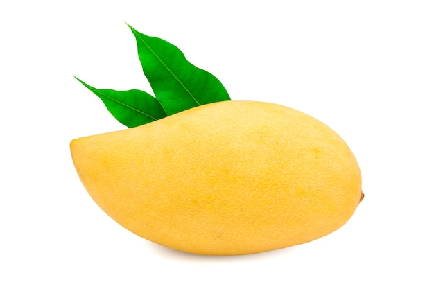Fresh mango on white