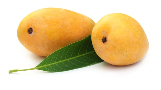 Свежие манго с зелеными листьями на белом фоне