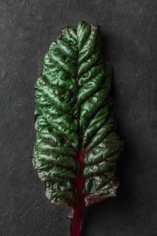 검은 배경에 신선한 망골드 샐러드 잎... 식물 질감입니다. 예술적 샷. 낮은 키. 평면도
