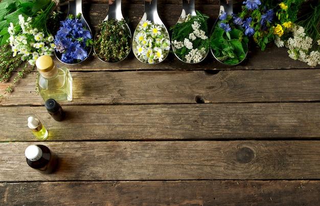 Fresh medicinal herbs.