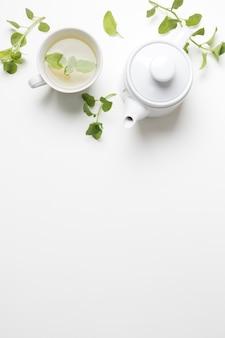 Травяные веточки свежей мяты с чашкой чая и чайником на белом фоне