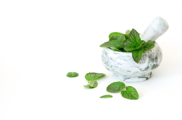 Fresh mint leafs in marble mortar bowl