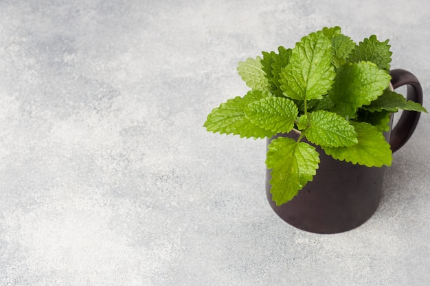 Fresh mint leaves in a cup on a grey table